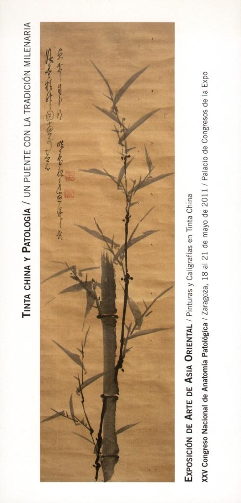 Tinta china y Patología1